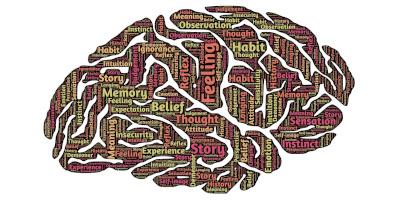 mozgové prepojenia
